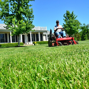 Lawn Mowing Northern Rivers, Handyman Services Wollongbar, Gardening Alstonville